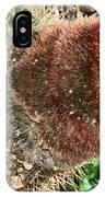 Cactus IPhone X Case
