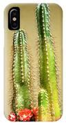 Cactus Towers IPhone Case