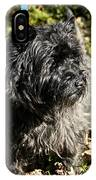 Cairn Terrier Portrait IPhone Case