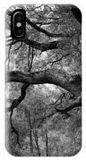 California Black Oak Tree IPhone Case