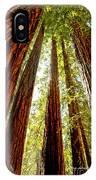 California Coastal Redwoods IPhone Case
