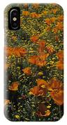 California Gold Poppies IPhone Case