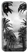 California Palms - Black And White IPhone Case