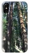 California Redwood IPhone Case