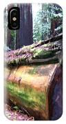California Redwoods 2 IPhone Case