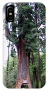 California Redwoods 6 IPhone Case