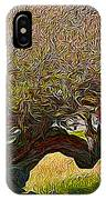 California Summer Oak IPhone Case