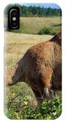 Camel In The Berry Bush IPhone Case