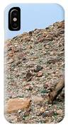 Camels At The Israel Desert -1 IPhone Case