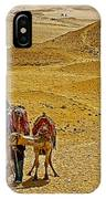 Camels Nuzzling On The Giza Plateau-egypt  IPhone Case