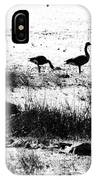 Canada Geese In Black And White IPhone Case