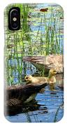 Canada Geese On Lily Pond At Reinstein Woods IPhone Case