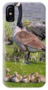 Canada Goose With Young IPhone Case