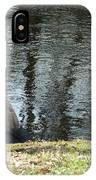 Canadian Geese On Spaulding Pond IPhone Case