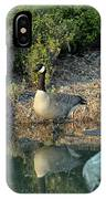 Canadian Goose Reflection IPhone Case