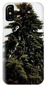 Canadian Pines IPhone Case