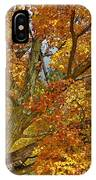 Canadian Tree 2012 IPhone Case