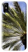 Canary Island Date Palm IPhone Case
