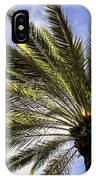 Canary Island Date Palm IPhone Case