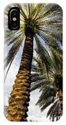 Canary Island Date Palms IPhone Case