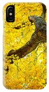 Canopy Of Autumn Leaves IPhone Case