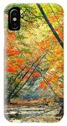 Canopy Of Color II IPhone Case