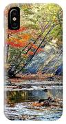 Canopy Of Color Iv IPhone Case