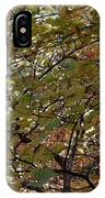 Canyon Del Oro IPhone Case
