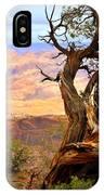 Canyon Vista 1 IPhone Case