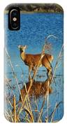 Cape Hatteras Deer In Pond 3 11/22 IPhone Case