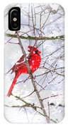 Cardinal Christmas-2014 IPhone Case