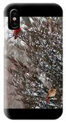 Cardinal Couple In Evergreen IPhone Case