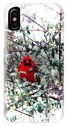 Cardinal Stare IPhone Case