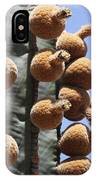 Cardon Cactus Fruit IPhone Case