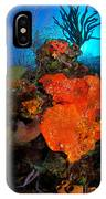 Caribbean Color IPhone Case