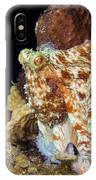 Caribbean Reef Octopus II IPhone Case