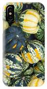 Carnival Winter Squash At The Market IPhone Case