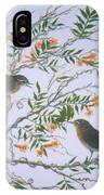 Carolina Wren And Jasmine IPhone Case