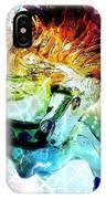 Carousel Sparkle IPhone Case