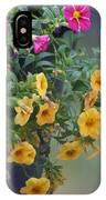 Cascade Of Color IPhone Case