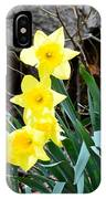 Cascade Of Daffodils IPhone Case