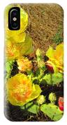 Cascading Prickly Pear Blossoms IPhone Case