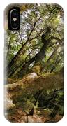 Castle Rock State Park Branch To The Sun IPhone Case