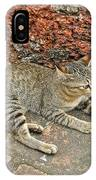 Cat At Wat Mahathat In 13th Century Sukhothai Historical Park-th IPhone Case