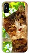 Cat In A Tree  IPhone Case