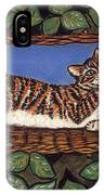 Cat Napping IPhone Case