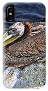 Catalina Pelican IPhone Case