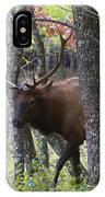 Cataloochee Bull Elk IPhone Case