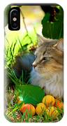 Cat's Mountain Summer IPhone Case