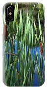 Cattail Pond In Watercolor IPhone Case